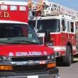 Pershing woman dies in house fire last night